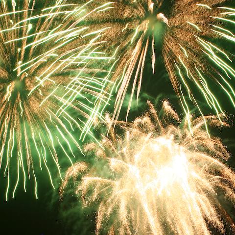 http://braino.org/me/wp-content/0607_fireworks_green.jpg